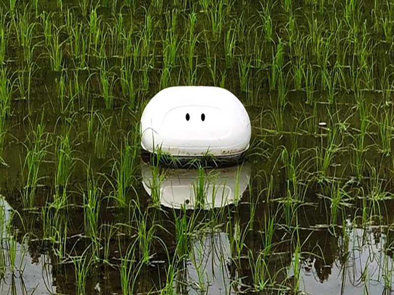 """Duck"" robot helps Japanese farmers to kill grass without chemicals"